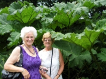 Great Dixter Garden Visit